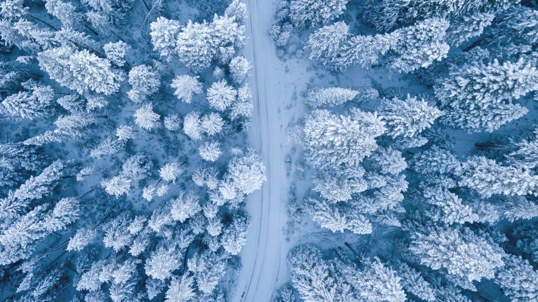 Efectele benefice ale zăpezii asupra organismului