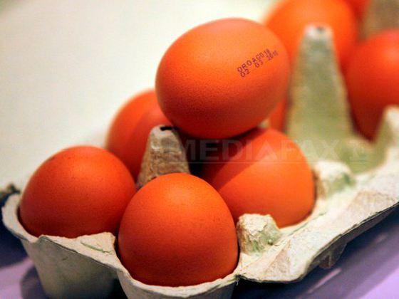 Ouă contaminate cu INSECTICID au ajuns în consum. Autorităţile au anunţat târziu situaţia