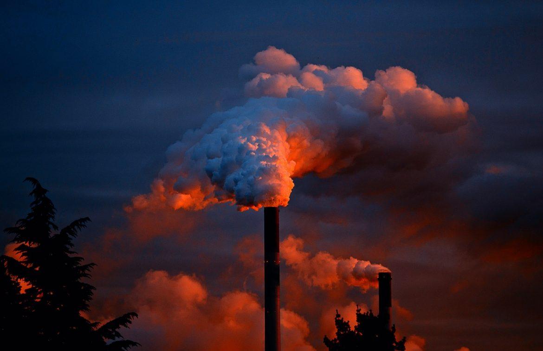 Acestea sunt ALIMENTELE care te scapă de efectele poluării