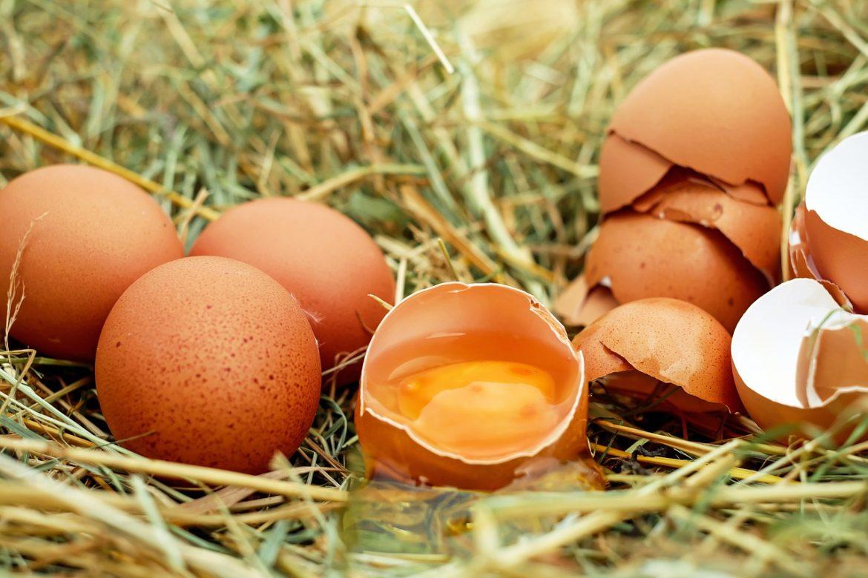 nu arunca cojile de ouă