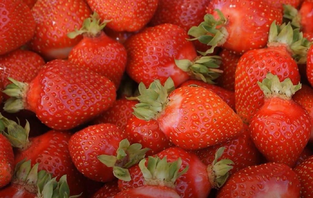 Îngrășământ pentru căpșuni pentru perioada de înflorire și fructificare!
