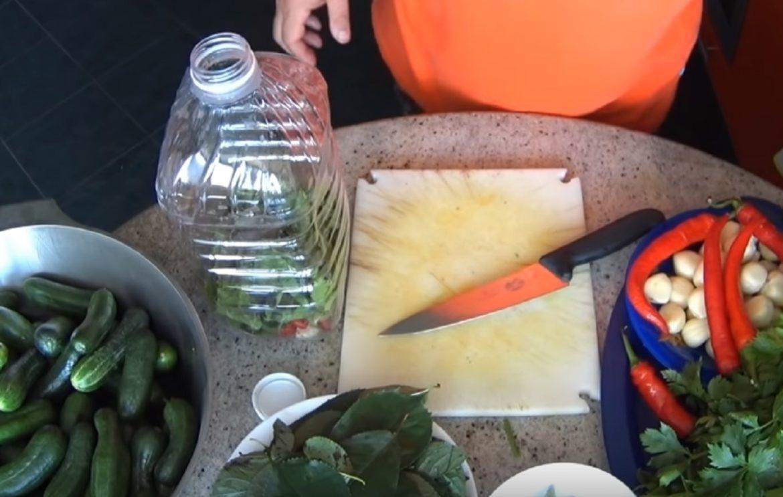 Castraveți murați în sticle de plastic (metoda rece)!