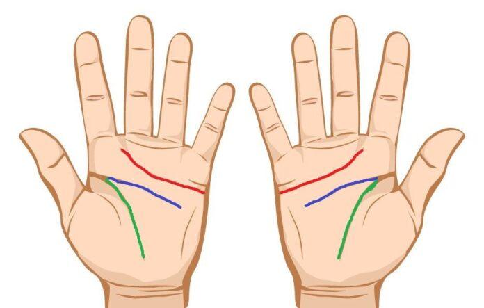 "Mainile reprezinta o ""harta"" a personalitatii noastre .Ce spun liniile din palma despre noi."