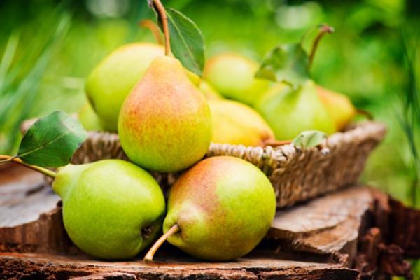 Remedii naturiste cu ajutorul perelor. Ce trateaza acest fruct.